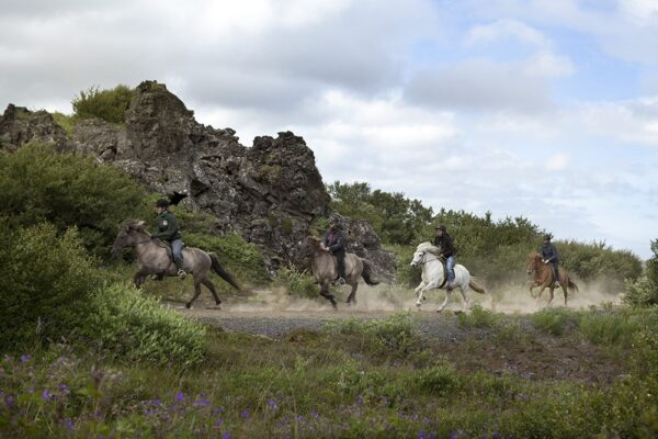 icelandic horse riding Atlantik Iceland Bespoke luxury travel FIT DMC PCO