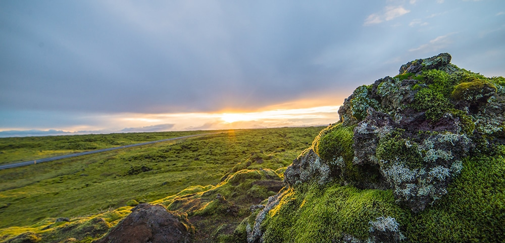 Moss covered landscape in Iceland on a summer night